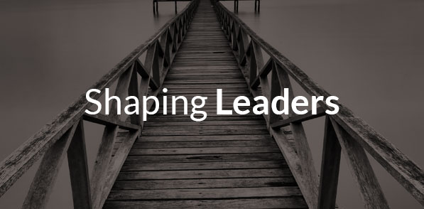 services-shapingleaders