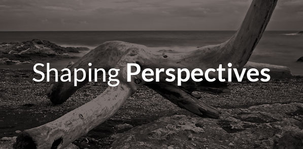 services-shapingperspectives