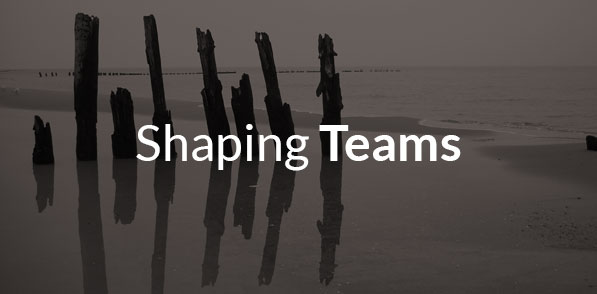 services-shapingteams